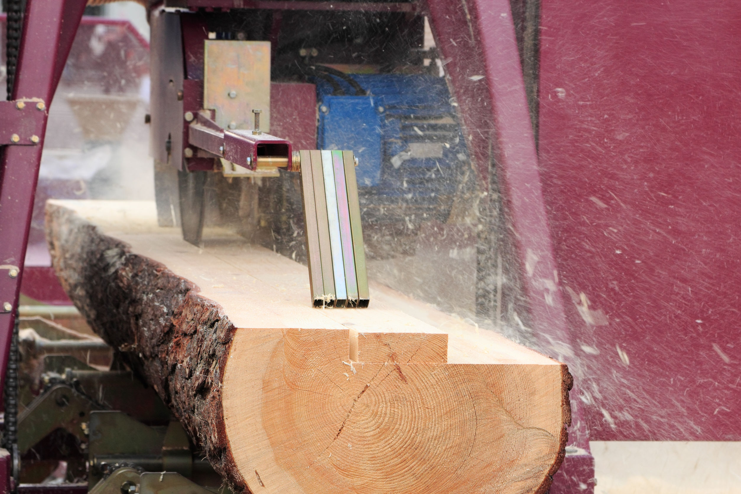 35548258 - sawing boards from logs with modern sawmill.